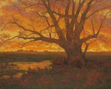 "Charles Partridge Adams, ""Untitled (Tree at Sunset, Colorado)"", oil, c. 1900  painting for sale"