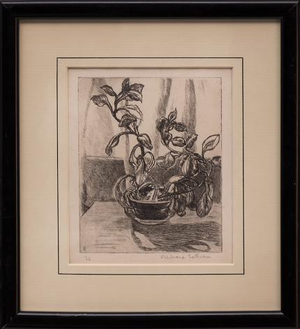 Barbara Latham, still life plant lithograph, 1926 new mexico painting fine art for sale purchase buy sell auction consign denver colorado art gallery museum