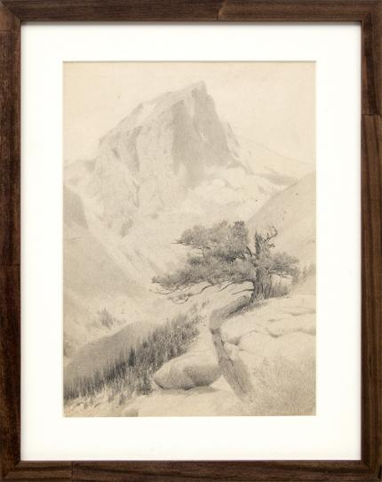"""Charles Partridge Adams, """"Untitled (Mountain Peak and Twisted Pine)"""", graphite, circa 1910, vintage art for sale, landscape, colorado"""