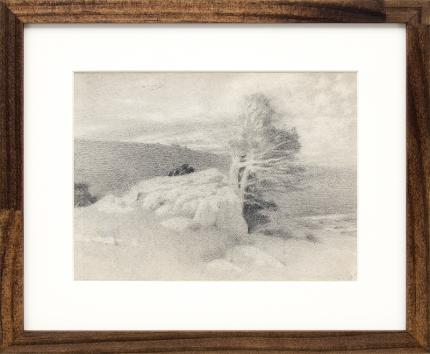 Charles Partridge Adams, vintage landscape drawing for sale, Wind Blown Pine and Rocks, Mountain Landscape, graphite, early 20th century, circa 1910, black, white, gray, brown frame